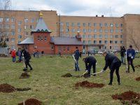 Субботник_22 апреля_2017_Центральная городская больница г. Электросталь